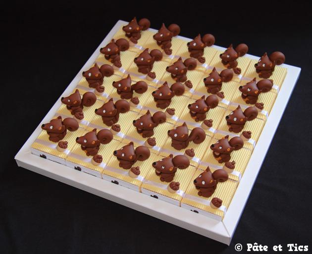 boites-dragees-ecureuils-04