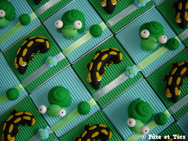 boites-dragees-salamandres-02