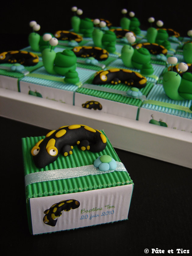 boites-dragees-salamandres-03
